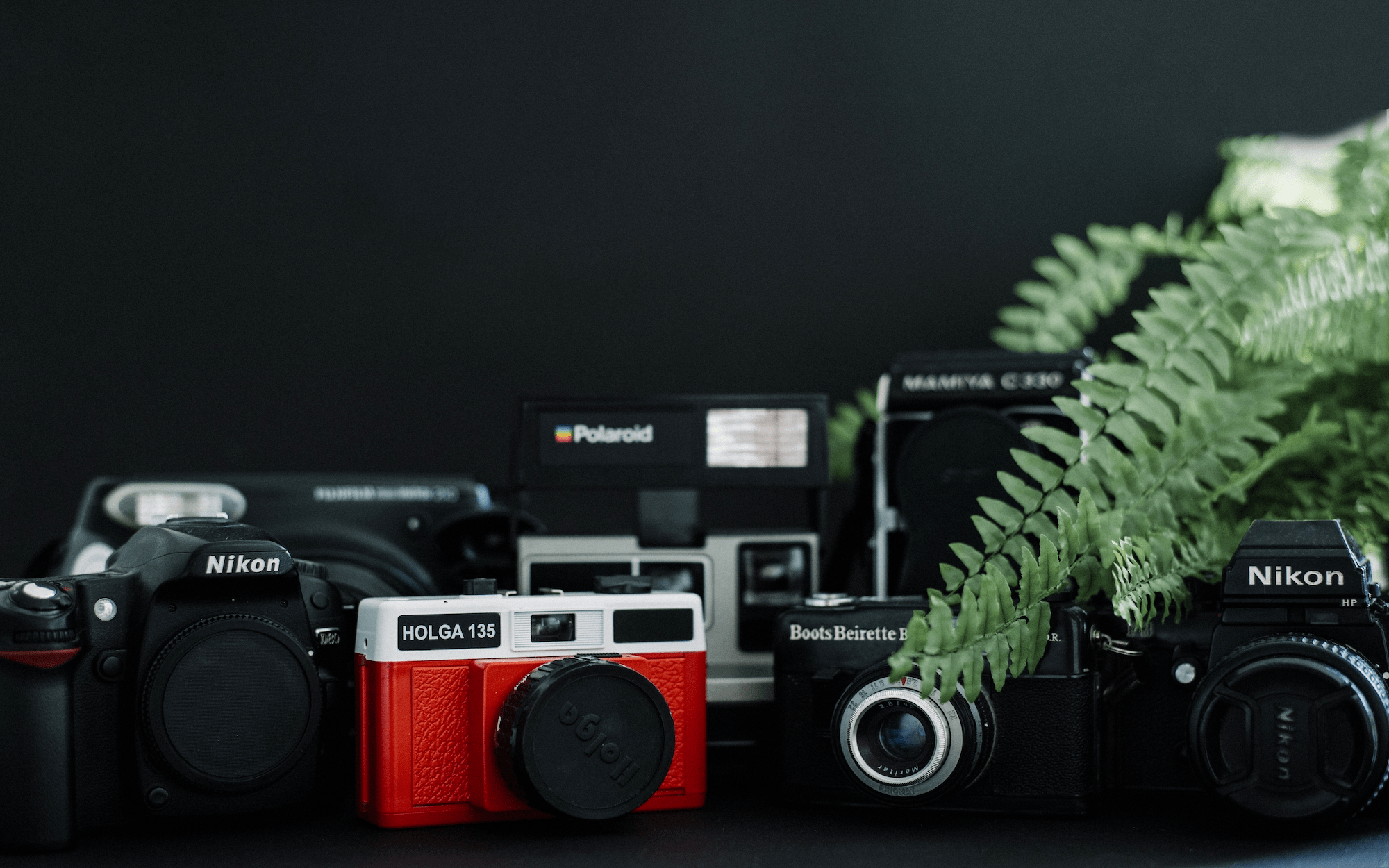 What Type of Camera to Buy: a Basic Guide to Buying a Camera